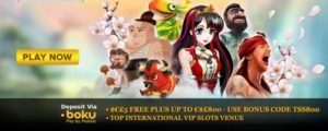 Play Now Online Review UK Casino